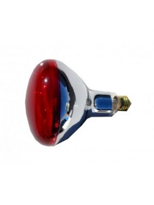 Replacement Bulb for HL1040